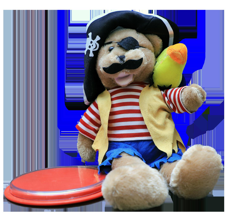 Pirate Switch Toy